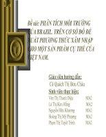 Đề tài: PHÂN TÍCH MÔI TRƯỜNG CỦA BRAZIL. TRÊN CƠ SỞ ĐÓ ĐỀ XUẤT PHƯƠNG THỨC XÂM NHẬP CHO MỘT SẢN PHẨM CỤ THỂ CỦA VIỆT NAM. pdf