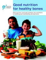 Good nutrition for healthy bones ppt