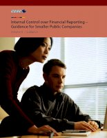 Internal Control over Financial Reporting – Guidance for Smaller Public Companies Volume II : Guidance pptx