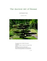 The Ancient Art of Bonsai pptx