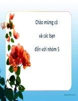 Bài thào luận: Phân tích tình hình lạm phát của Việt Nam từ năm 2004 đến nay ppt