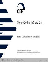 Secure Coding in C and C++ pdf