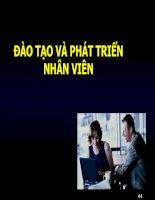 bài giảng quản trị nguồn nhân lực ( lê thị thảo) - chương 5 đào tạo và phát triển nhân viên