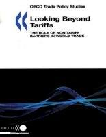 oecd trade policy studies looking beyond tariffs doc