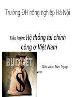 Hệ thống tài chính công ở Việt Nam pot