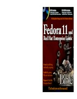 Fedora 11 and Red Hat Enterprise Linux Bible ppt