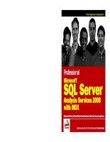 Professional Microsoft SQL Server Analysis Services 2008 with MDX pdf