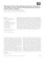 Báo cáo khoa học: Mechanism of the ring contraction process in vitamin B12 biosynthesis by the anaerobe Propionibacterium shermanii under aerobic conditions docx