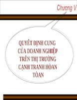 Chương V: QUYẾT ĐỊNH CUNG CỦA DOANH NGHIỆP TRÊN THỊ TRƯỜNG CẠNH TRANH HÒAN TÒAN ppt