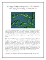 Sử dụng tảo Spirulina platensis để kiểm soát chất lượng nước trong bể nuôi tôm Sú pot