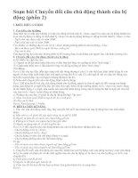 Soạn bài Chuyển đổi câu chủ động thành câu bị động (phần 2)