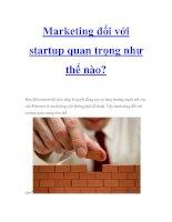 Marketing đối với startup quan trọng như thế nào? ppt