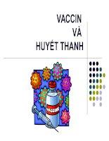 VACCIN VÀ HUYẾT THANH pdf