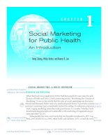 SOCIAL MARKETING FOR PULIC HEALTH AN INTRODUCTION potx