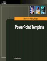 Mẫu slide Power Point Template 22