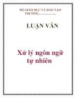 LUẬN VĂN: Xử lý ngôn ngữ tự nhiên doc