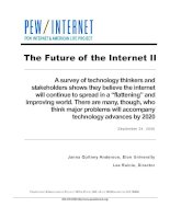 "A survey of technology thinkers and stakeholders shows they believe the internet will continue to spread in a ""flattening"" and improving world. There are many, though, who think major problems will accompany technology advances by 2020 doc"