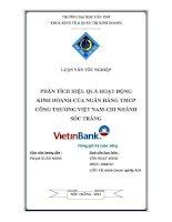 phân tích hiệu quả hoạt động kinh doanh của ngân hàng tmcp công thương việt nam - chi nhánh sóc trăng