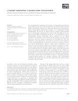 Báo cáo khoa học: L-Lactate metabolism in potato tuber mitochondria docx