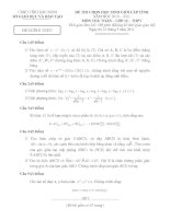 Đề thi HSG THPT lớp 12 tỉnh Bắc Ninh môn toán năm 2011 pdf