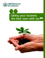 Giving your business the best start with tax pot