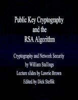 Public Key Cryptography and the RSA Algorithm pptx