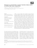 Báo cáo khoa học: Changes in acetylcholine receptor function induce shifts in muscle fiber type composition docx