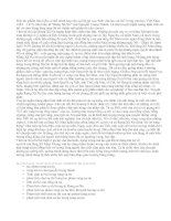 Tính sử thi của tác phẩm Rừng xà nu (Nguyễn Trung Thành) - văn mẫu
