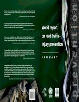 World report on road traffic injury prevention ppt