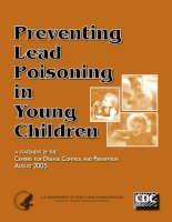 Preventing Lead Poisoning in Young Children pptx