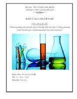Chuyên đề: Phương pháp giải nhanh một số bài tập Hóa học lớp 11 bằng phương trình ion thu gọn và phương trình bảo toàn electron pot