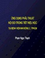 ỨNG DỤNG PHẪU THUẬT NỘI SOI TRONG TIẾT NIỆU HỌC TẠI BỆNH VIỆN NHI ĐỒNG 2, TPHCM pdf