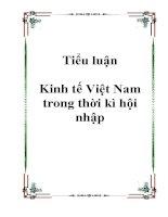 Tiểu luận Kinh tế Việt Nam trong thời kì hội nhập pdf