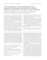 Báo cáo khoa học: The N-acetylglutamate synthase/N-acetylglutamate kinase metabolon of Saccharomyces cerevisiae allows co-ordinated feedback regulation of the first two steps in arginine biosynthesis potx