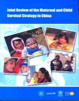Joint Review of Maternal and Child Survival Strategies in China ppt