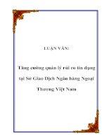 LUẬN VĂN: Tăng cường quản lý rủi ro tín dụng tại Sở Giao Dịch Ngân hàng Ngoại Thương Việt Nam pot