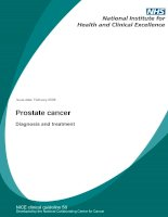 Prostate cancer - Diagnosis and treatment pot