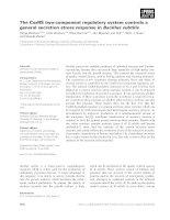 Báo cáo khoa học: The CssRS two-component regulatory system controls a general secretion stress response in Bacillus subtilis pdf