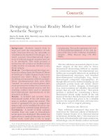 Designing a Virtual Reality Model for Aesthetic Surgery docx