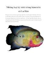 Những loại ký sinh trùng bám trên cá La Hán pdf