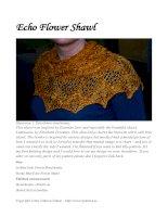 Echo Flower Shawl pdf