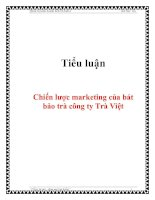 Tiểu luận: Chiến lược marketing của bát bảo trà công ty Trà Việt pptx