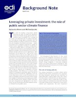 Leveraging private investment: the role of public sector climate finance pot