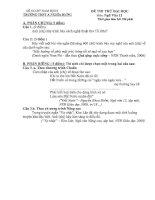 Đề thi thử đại học môn Ngữ Văn THPT A Nghĩa Hưng pot