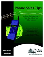 Phone Sales Tips - Making the Telephone a Tool that Brings You Sales Success docx