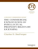 THE COMMERCIAL EXPLOITATION OF INTELLECTUAL PROPERTY RIGHTS BY LICENSING docx