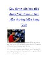 Xây dựng văn hóa tiêu dùng Việt Nam - Phát triển thương hiệu hàng Việt potx