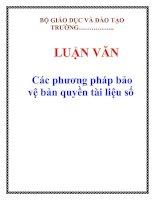 LUẬN VĂN: Các phương pháp bảo vệ bản quyền tài liệu số potx