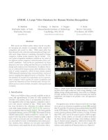 HMDB: A Large Video Database for Human Motion Recognition pdf