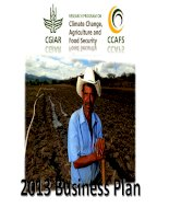 RESEARCH PROGRAM ON CLIMATE CHANGE, AGRICULTURE AND FOOD SECURITY: 2013 BUSINESS PLAN docx